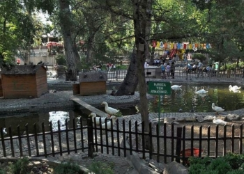 Ankara Kuğulu Park Panorama